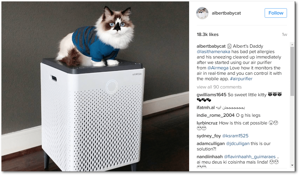 albertbabycat doing some instagram influencer marketing for an Air Purifier